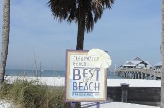 Clearwater FL Real Estate Agent - Scott & Amy Ferguson